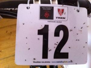 Bib #12 Paris-Roubaix